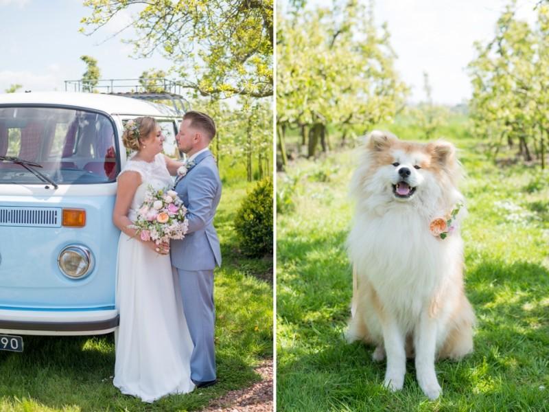 fotoshoot-in-een-boomgaard-bloesem-bruiloft