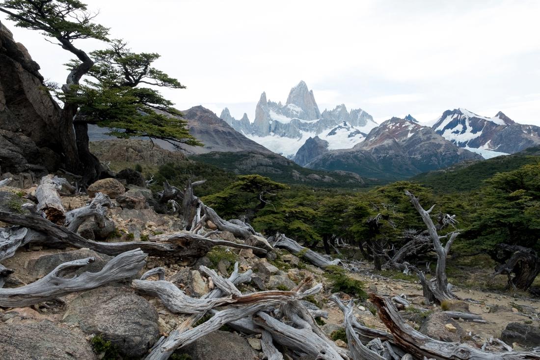 fitz-roy-el-chalten-reisfoto-argentinie